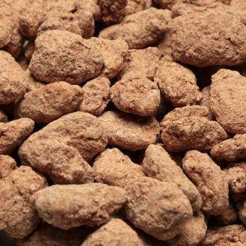 Cinnamon Spiced Pecans