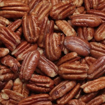 Roasted Buttered and Salted Pecans from Alamo Pecan & Coffee in San Saba, TX