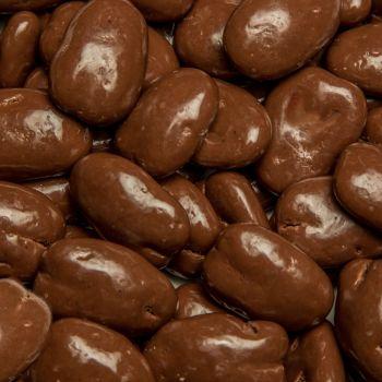Sugar Free Chocolate Covered Pecans from Alamo Pecan & Coffee in San Saba, TX